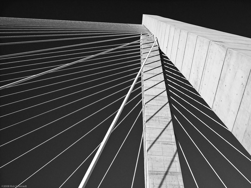 Ravenel Bridge Suspension Cables, B&W