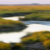 Marsh Blur from IOP Connector