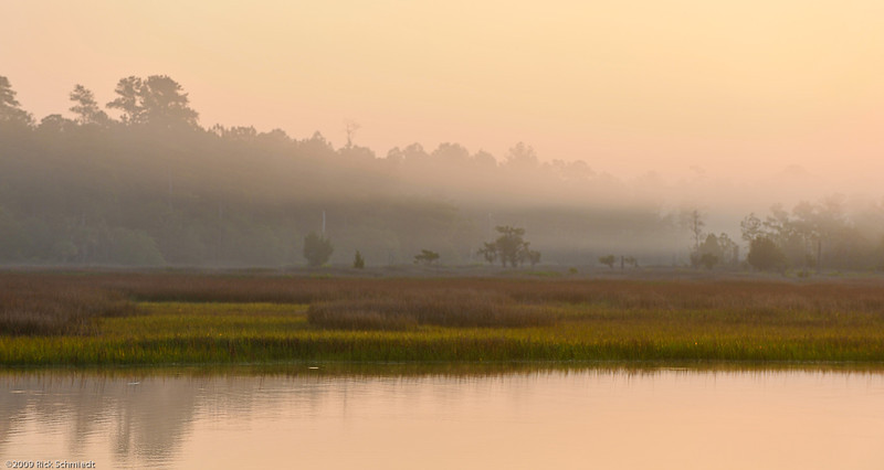 Beresford Creek Predawn Marsh