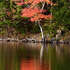 Fall Reflection on Eagle Lake, Maine