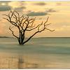 Botany Bay Sentinel