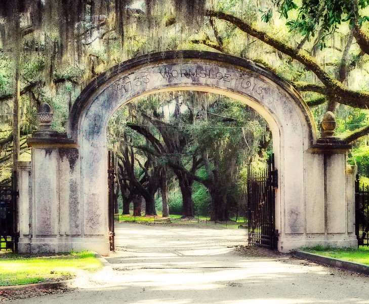 Wormsloe Plantation Gate<br /> Savannah, GA