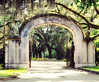 Wormsloe Plantation Gate<br /> Savannah, GA