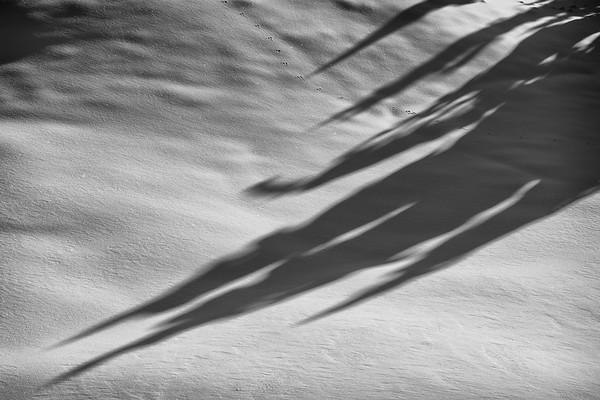 Sharpening shadows