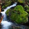 Duckabush side stream