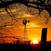Prairie Silhouette