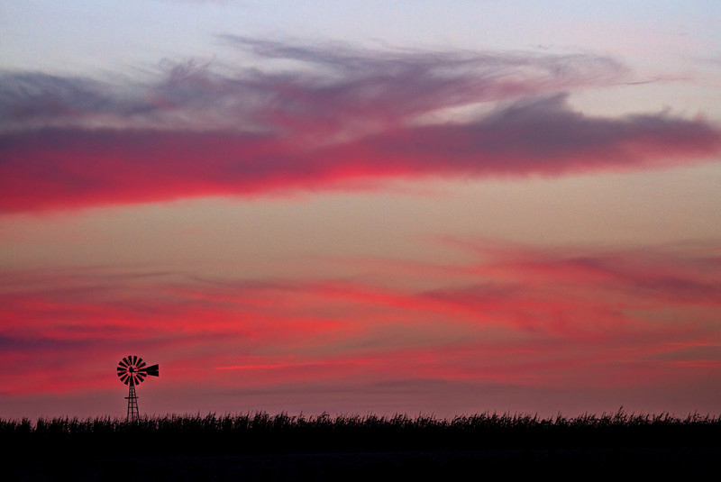 Sunset clouds over a corn field in McCook County, SD.