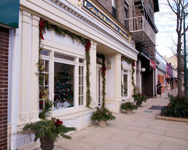 Christmas Lights 2010  32443