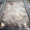Horse Shoe Pit-