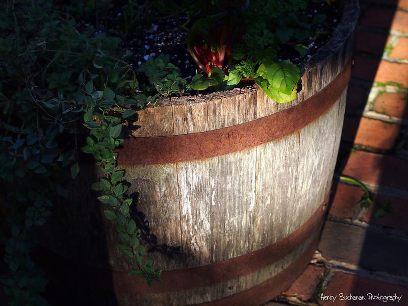 Jack Daniels barrel-