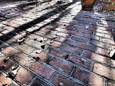 Sunset in the Brickyard