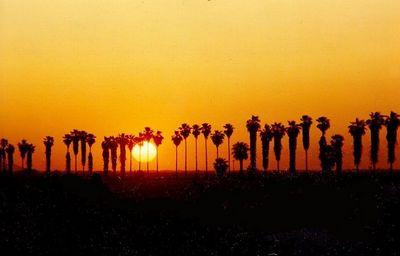 sunset, near Yuma, AZ, apr 1991