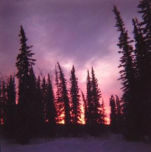 December sunset, North Pole, Alaska, our front yard