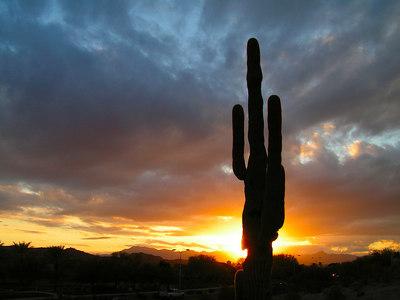 Sunset, Jenny's Wash off Ray Rd, Awatookee, AZ, nov 28, 2006a(31)