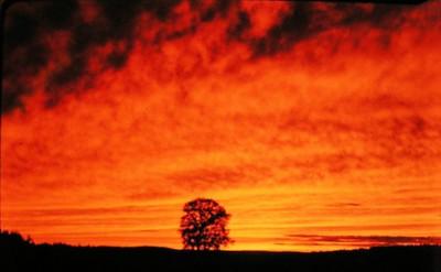 Gaspe sunset, New Brunswick, aug 1978a