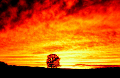 Sunset near Miramichi,  New Brunswick, aug 1978