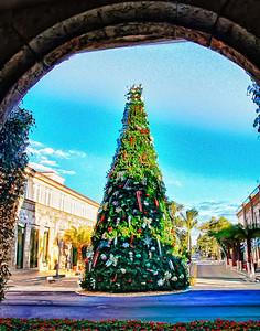 O Christmas Tree on Worth Avenue.