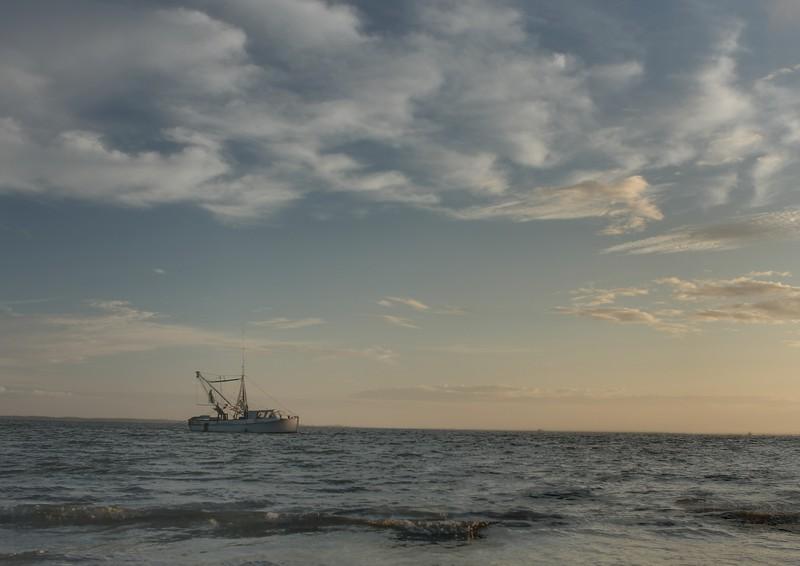IMG_7609  shrimp boat 1