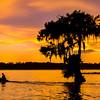 Lake Martin, Breaux Bridge, Louisiana