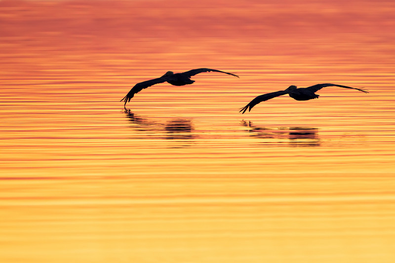 Choctawhatchee Bay, Florida
