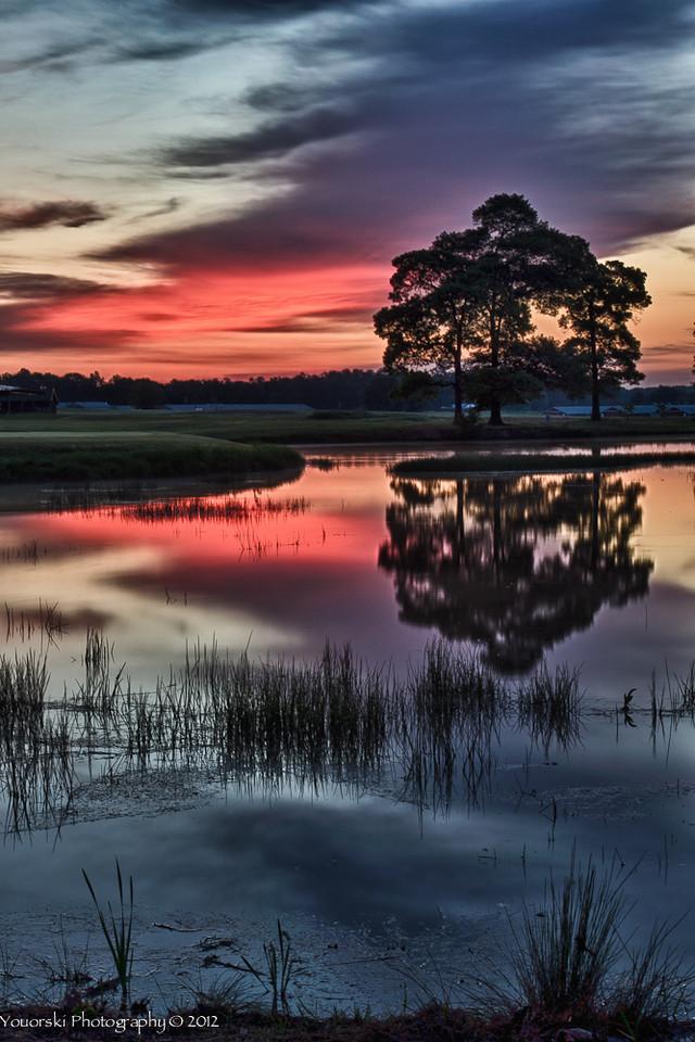 Morgan Dairy Golf Club