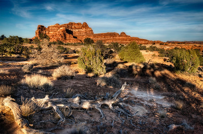 In Canyonlands, the sunset and long shadows