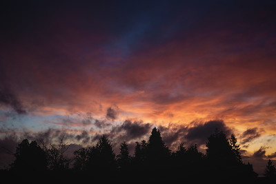 March 20th, 2016 (From Home - Greenwood, Seattle, WA