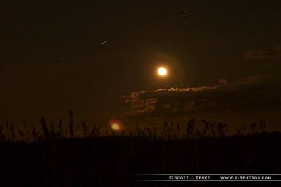 moonlit field
