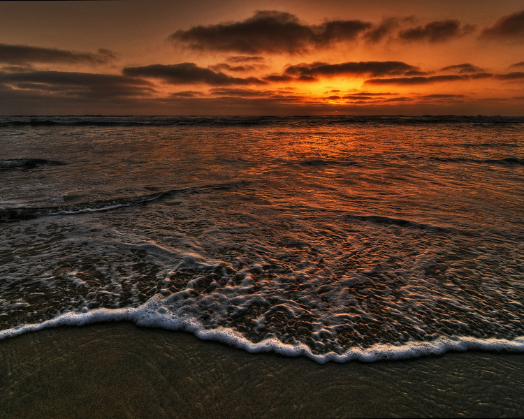 Torrey Pines State Beach - San Diego, CA