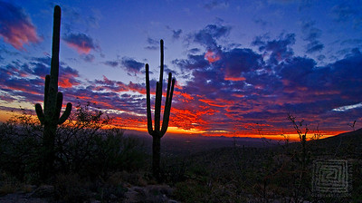 """Edge of Night"", Tucson, Az., 12/10/09"