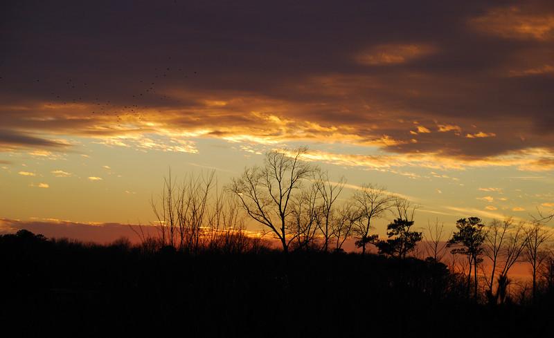Sunset - Delmar, Delaware - 02/26/11