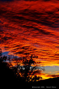 """Fire in the Sky"", Sunrise, Tucson, Az., 09/28/10"