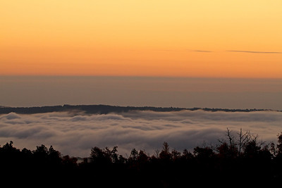 A blanket of fog over Boxley Valley