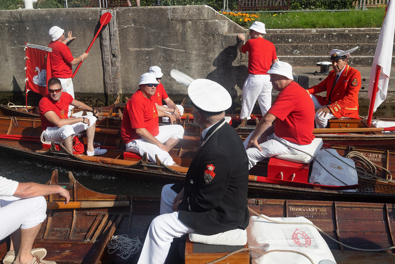 Boveney Lock, near Eton, UK: 20th July, 2021. Annual Swan Upping census of the swan population on the river Thames.. Swan Uppers from the Worshipful Company of Vintners and Worshipful Company of Dyers row upriver in traditional skiffs with the Queen's swan marker David Barber (scarlet blazer). The annual event is believed to date back to 1189, when The Crown claimed ownership of all mute swans for food for banquets and feasts. Today the cygnets are weighed and measured to obtain estimates of growth rates and are examined for signs of injury, usually caused by fishing hooks and line.