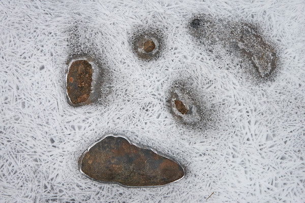 Tomb Of Ice And Stones