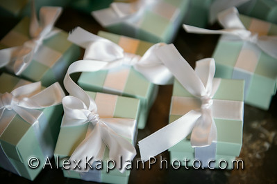 AlexKaplanWeddings-25-2950