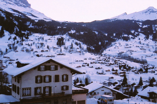 Switzerland. Photo by Steve Elkins. January 2012. 35mm film.