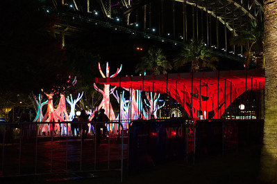 Vivid Light Display in Sydney