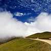 <h4> Into The Clouds</h4>French Pass, New Zealand