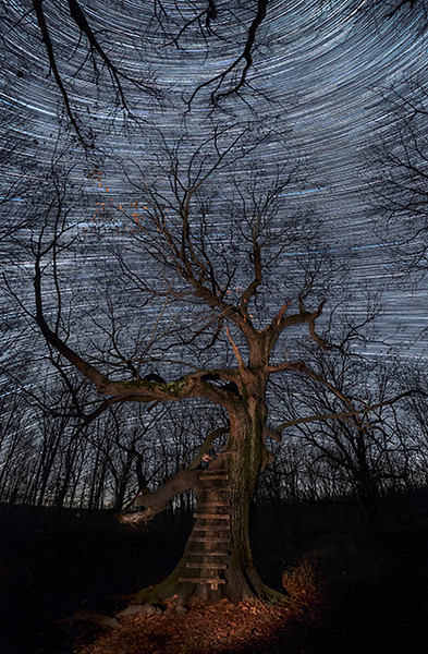 Star Trails at Sugar Grove