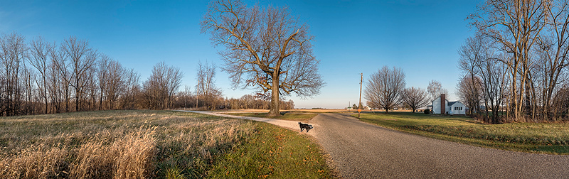 Lincoln Trail, Vermilion County