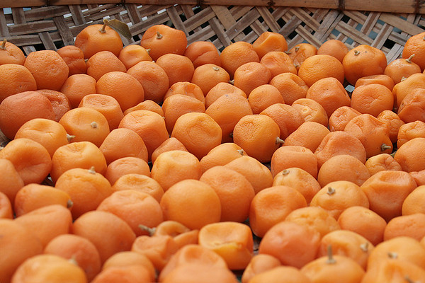 Tai O, Fruit