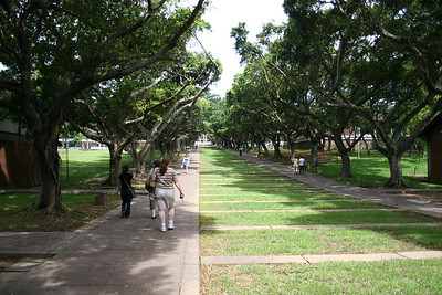 """The """"campus mall"""" at Tunghai.  Nina (red hair) and Anne, just ahead of Nina, are walking right in front of me."""