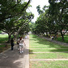 "The ""campus mall"" at Tunghai.  Nina (red hair) and Anne, just ahead of Nina, are walking right in front of me."