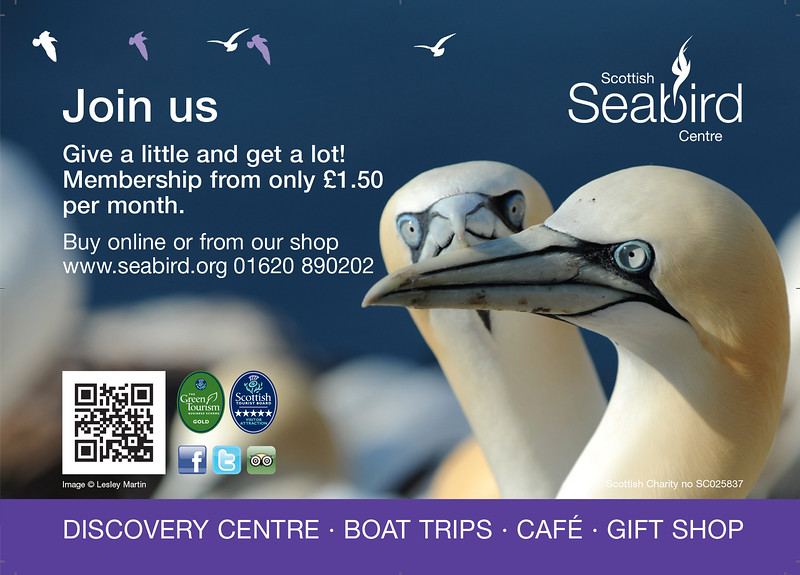 The Scottish Seabird Centre