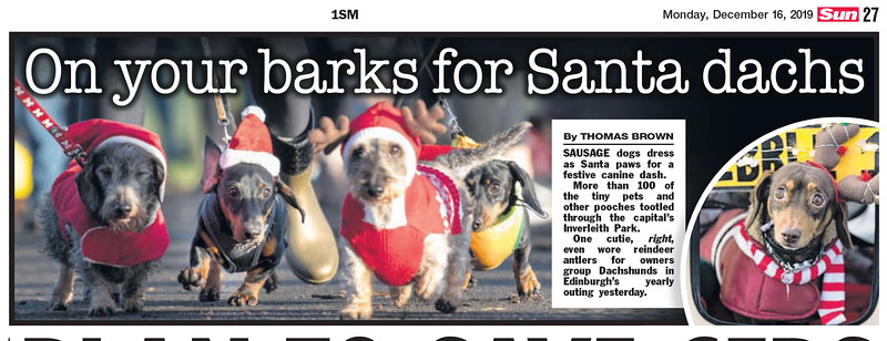 Dachshund Santa Dash - The Sun