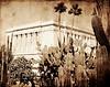 Mesa Temple cactus 11x14