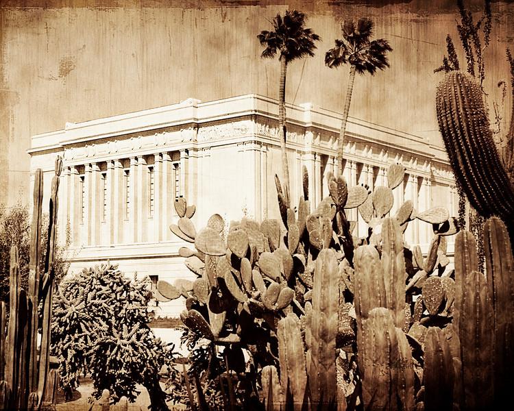 Mesa Temple Cactus 8x10