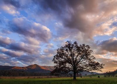 Smoky Mountains-339