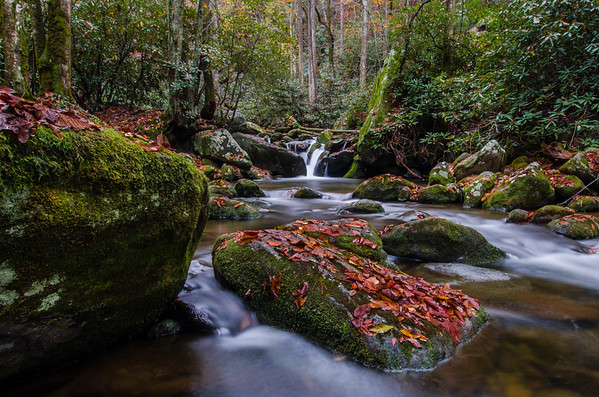 Smoky Mountains-573
